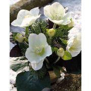 Composizione artificiale di rose di Natale DANITA in vaso di argilla, bianco-verde, 20cm