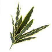 Sansevieria finta DIDEM stelo, zona trasversale verde-giallo 50cm