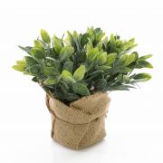 Salvia finta VITUS, in sacco di juta , verde-bianco, 20cm, Ø22cm