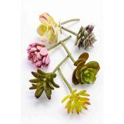 Succulente artificiali JADON, su stelo, 6 pezzi, multicolore, 13cm, Ø5cm, Ø5cm